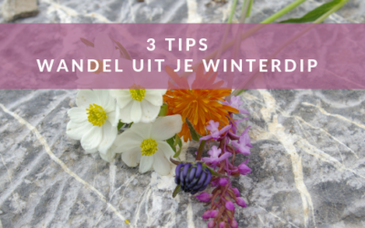 Drie tips: Wandel uit je winterdip het voorjaar in.
